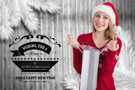 christmas time: Beautiful woman in santa hat holding shopping bag during christmas time Stock Photo