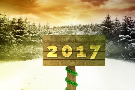 Digital image of new year 2017 against snow scene