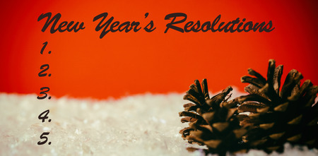 new years resolution: Composite image of new years resolution and pine cone on snow Stock Photo