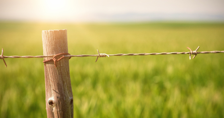 wire fence: Close up of fence in field on sunny day Stock Photo