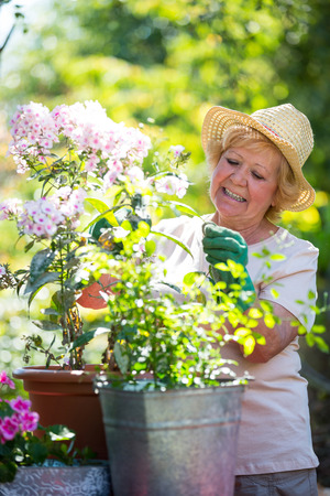 Senior woman examining flowers in garden on a sunny day