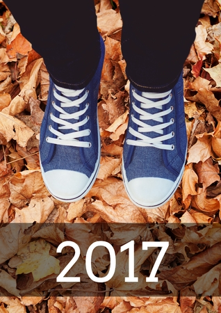 2017 new year wishes with teenager wearing sneakers against lot of dry leaves