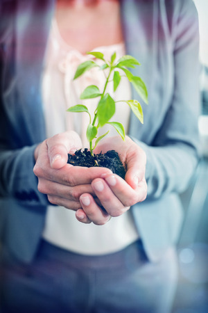 midsection: Midsection of businesswoman holding plant in office