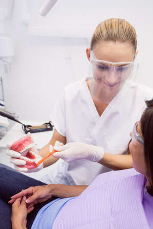 oral communication: Dentist showing model teeth to female patient in dental clinic