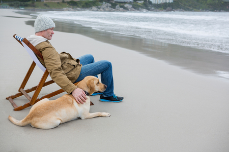 mimos: Man pampering dog while sitting on chair at the beach