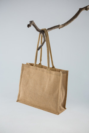 Jute bag hanging on a tree branch against white background