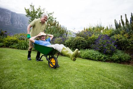 Senior man carrying his partner in wheelbarrow in lawn Stockfoto