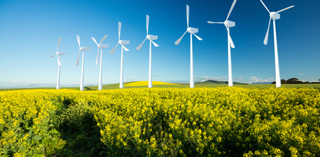 Digital composite image of wind turbines against yellow mustard field 3d
