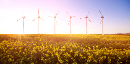 horizon over land: Digital composite image of wind turbines  against scenic view of beautiful mustard field 3d Stock Photo