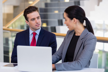 premises: Business executives discussing over laptop at desk