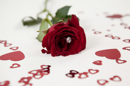 Close-up of red rose with a diamond ring surrounded by heart-shaped decoration