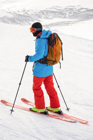 telephone poles: Rear view of skier skiing on snow covered mountains Stock Photo