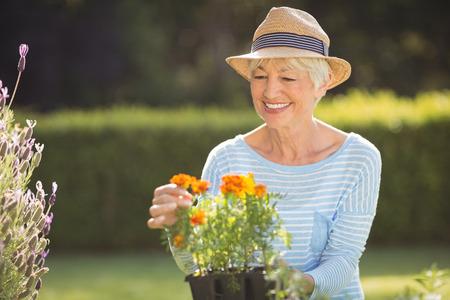 Happy senior woman gardening in backyard