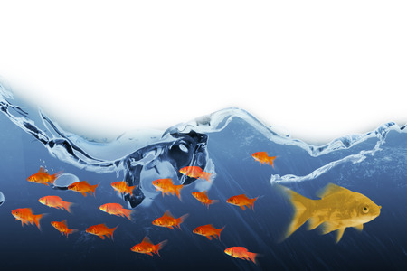 3D Side view of fish swimming against digital composite image of sea