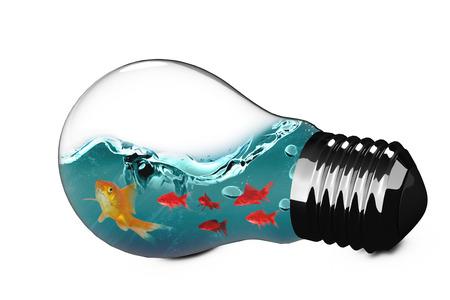 3D Empty light bulb against goldfish against white background