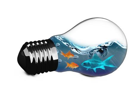 3D Empty light bulb against orange goldfish