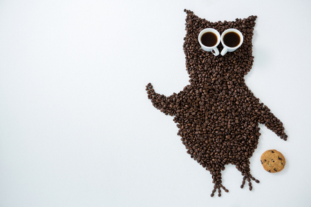 Coffee beans forming owl shape on white background