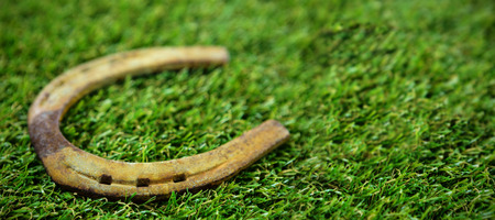 High angle view of horseshoe on field during St Patricks day Stock Photo