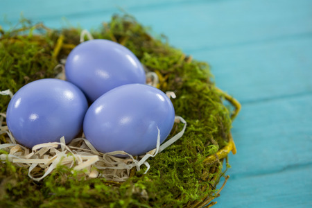 Close-up of violet Easter eggs in the nest on wooden background