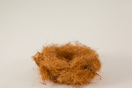 concern: Close up of empty nest against white background