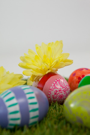 Painted easter eggs with yellow flowers on grass Stock Photo