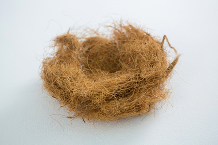 concern: Close-up of nest on white background Stock Photo