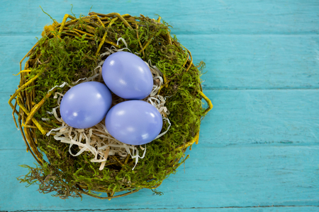concern: Close-up of violet Easter eggs in the nest on wooden background