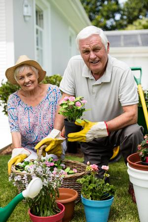 Portrait of senior couple gardening together in backyard