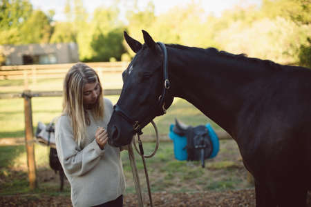 Woman petting horse in farm on a sunny day