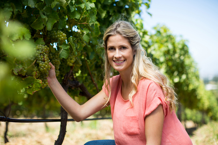 Portrait of smiling woman holding grapes growing on plant at vineyard