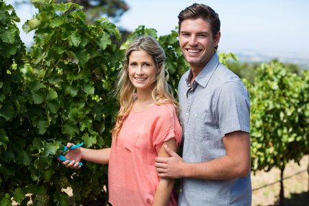 Portrait of happy young couple using pruning shears at vineyard