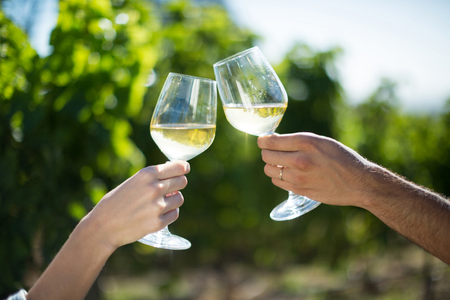 Cropped hands of couple toasting wineglasses at vineyard on sunny day Stock Photo