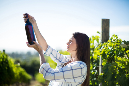 Side view of woman holding wine bottle at vineyard during sunny day