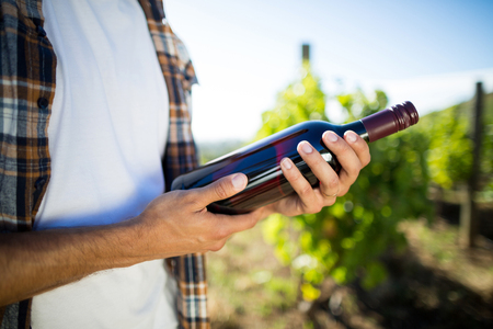 Mid section of man holding wine bottle at vineyard during sunny day