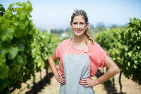 Portrait of smiling female farmer with hands on hip standing at vineyard Stock Photo