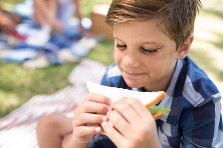 晴れた日に公園でのピクニックでサンドイッチを持つ少年