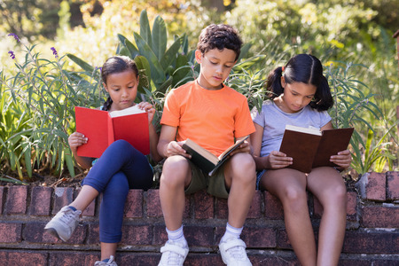Group of friends reading books while sitting on retaining wall at natural parkland