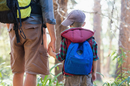 Rear view of elementary boy holding hands with father standing in forest Stock Photo