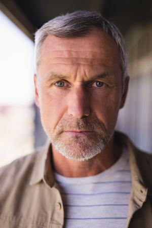 Close up portrait of mature businessman in office