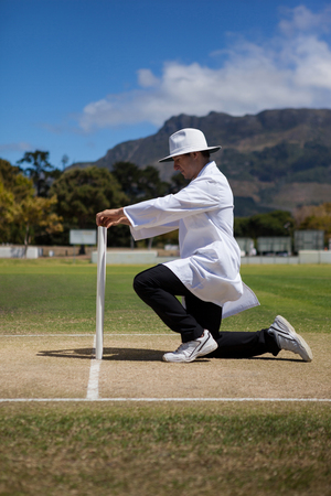 Side view of cricket umpire putting bails on stumps at field during match Stock Photo