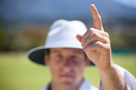 Cricket umpire signaling out sign during match on sunny day