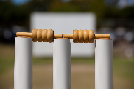 Close-up of bails on stumps at cricket field