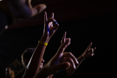 Audience dancing at a rock concert in club Stock Photo