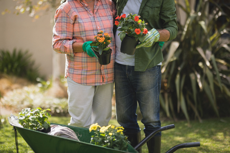 Mid section of senior couple holding potted plants while standing by wheel borrow in yard