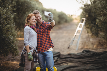 Smiling young couple taking selfie while working at olive farm