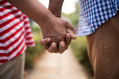 hairline: Cropped image of senior couple holding hands while standing in yard