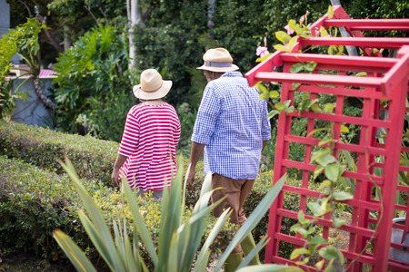 Rear view of senior couple wearing hats while walking in yard
