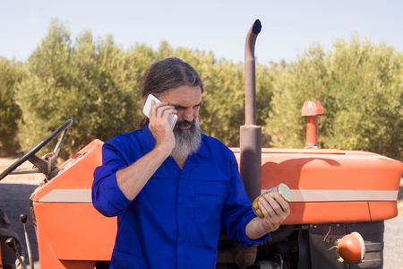 Man talking on mobile phone while examining pickled olive in farm Stock Photo