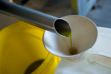 plastic pipe: Olive oil being produced from machine in factory