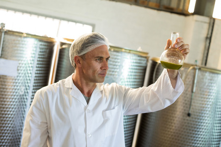 harvested: Technician examining olive oil produced from machine in factory